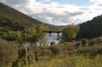 Ponte de ligação entre Valverde da Gestosa e Vilarinho das Azenhas ECOSATIVA, Lda.